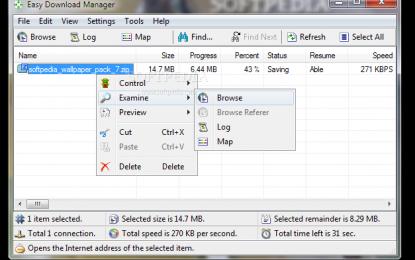Easy Download Manager 4.9 برنامج تحميل ملفات مجاني